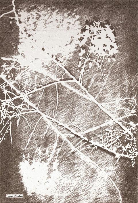 Tapis Pierre Cardin SANZELIZE2 - Crédit Pierre Cardin