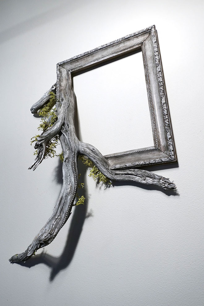 """Forrest"" par Darryl Cox - © fusionframes"