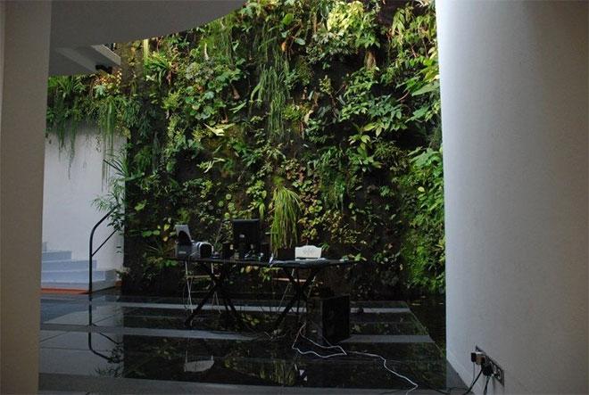 Bureau contemporain végétalisé - Crédit internet
