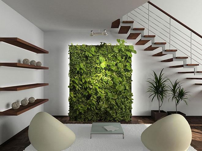 Mur végétal en décoration de salon - Crédit internet